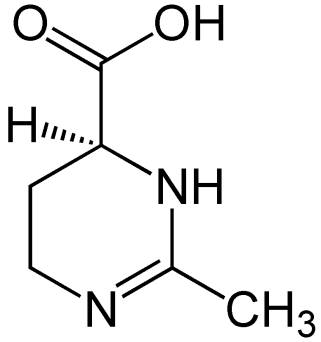 Structural formula of ectoine