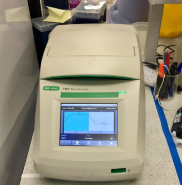 Using PCR machine for DNA incubation!